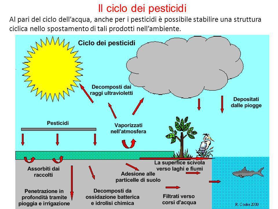 Il ciclo dei pesticidi