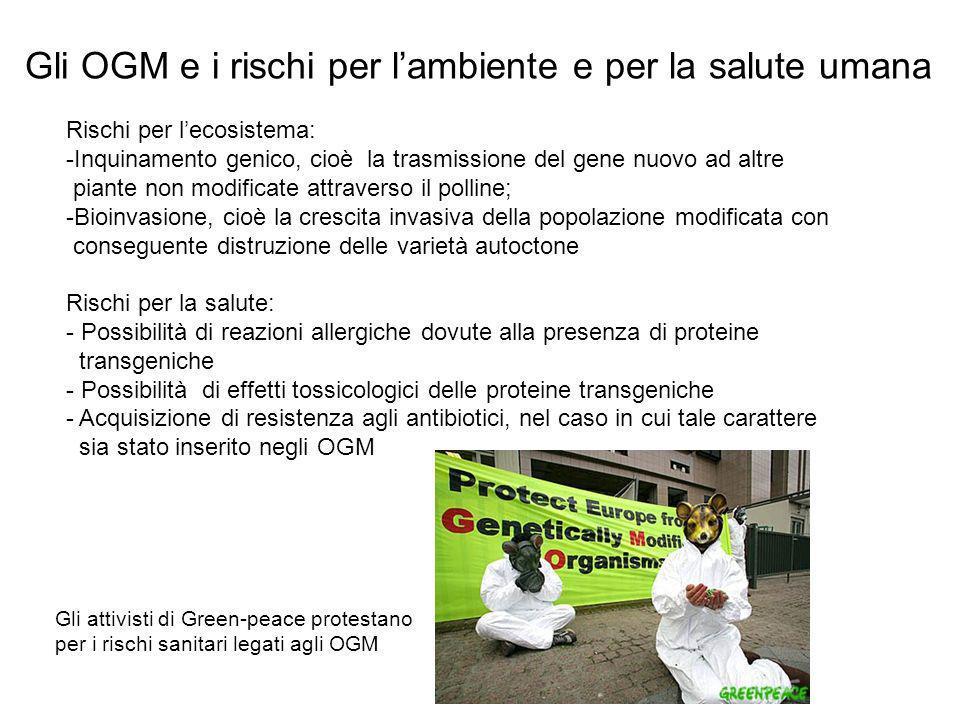 Gli OGM e i rischi per l'ambiente e per la salute umana