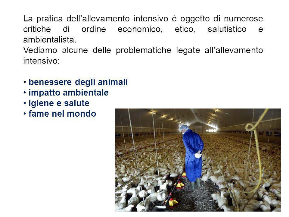 La pratica dell'allevamento intensivo è oggetto di numerose critiche di ordine economico, etico, salutistico e ambientalista.