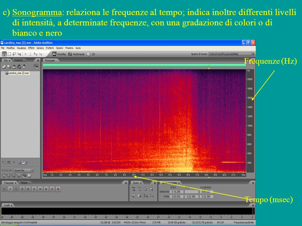 c) Sonogramma: relaziona le frequenze al tempo; indica inoltre differenti livelli di intensità, a determinate frequenze, con una gradazione di colori o di bianco e nero