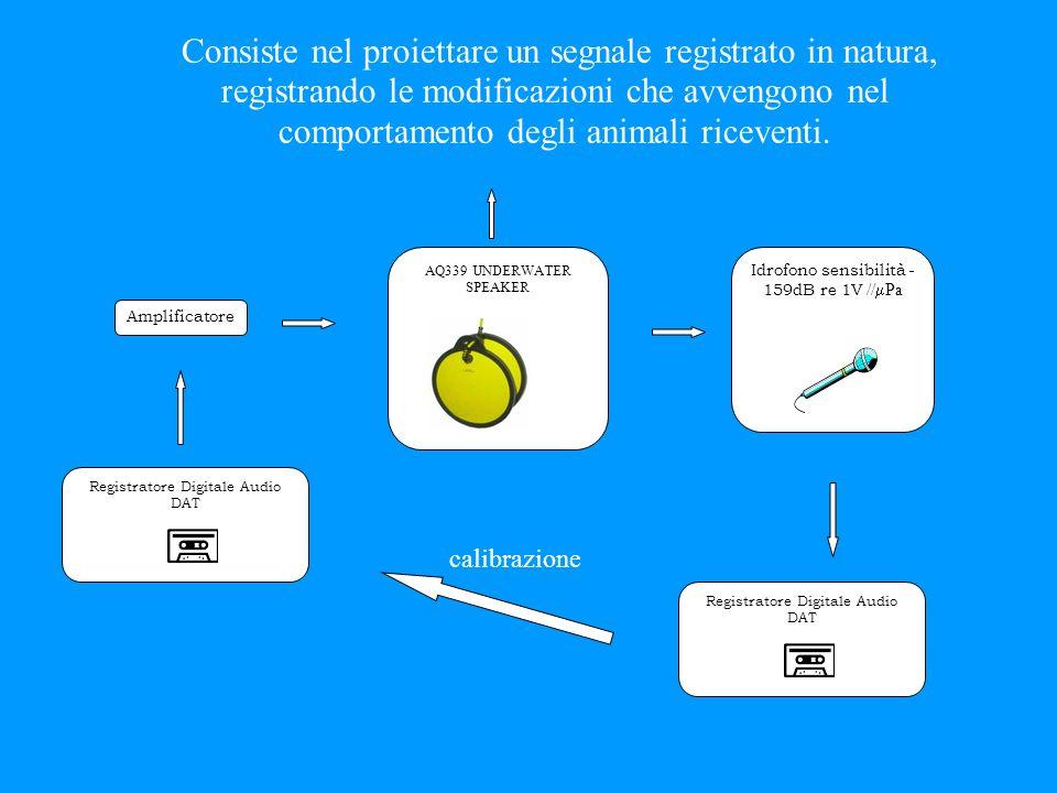 Consiste nel proiettare un segnale registrato in natura, registrando le modificazioni che avvengono nel comportamento degli animali riceventi.