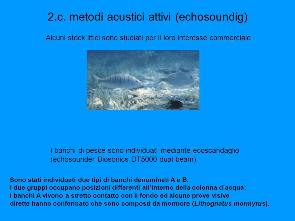 2.c. metodi acustici attivi (echosoundig)