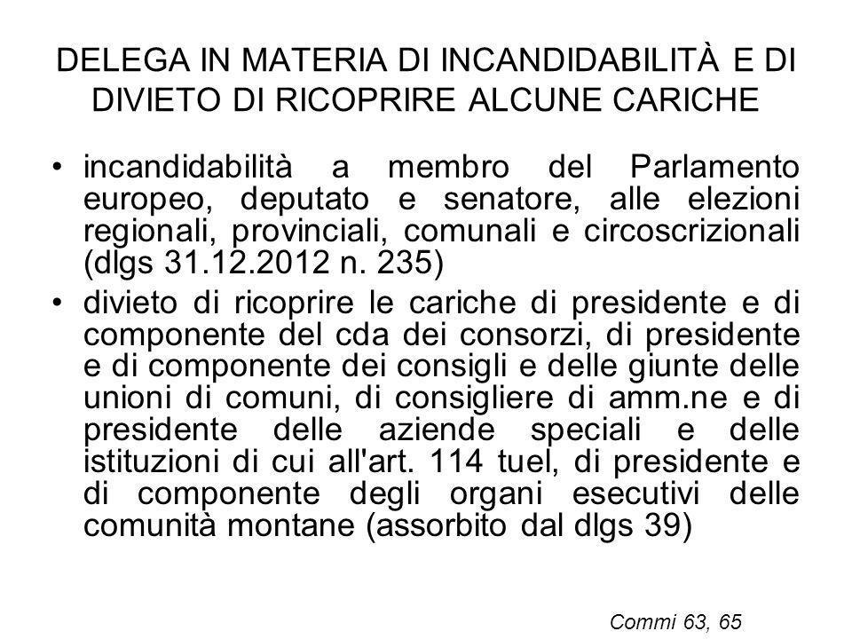 DELEGA IN MATERIA DI INCANDIDABILITÀ E DI DIVIETO DI RICOPRIRE ALCUNE CARICHE