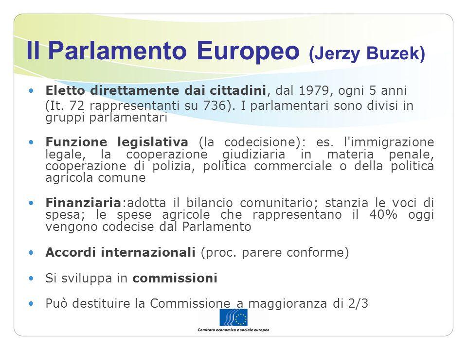Il Parlamento Europeo (Jerzy Buzek)