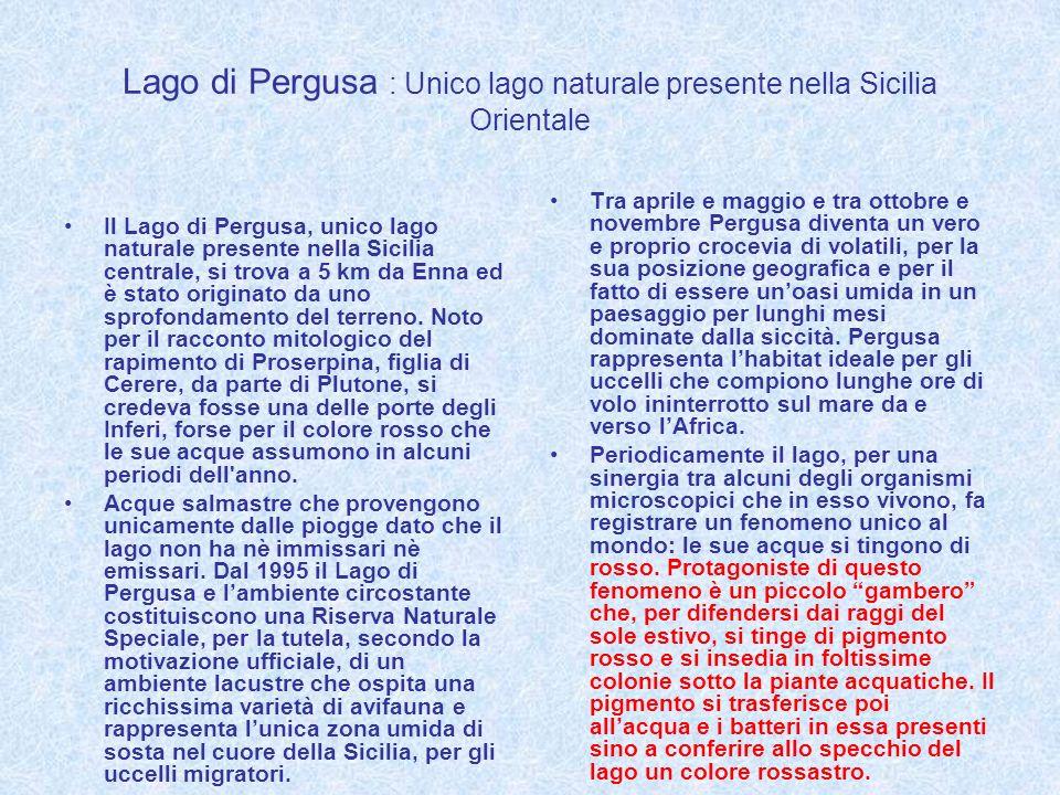 Lago di Pergusa : Unico lago naturale presente nella Sicilia Orientale