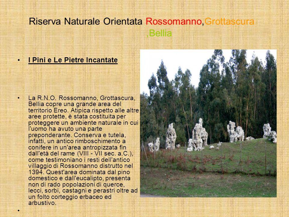 Riserva Naturale Orientata Rossomanno,Grottascura ,Bellia