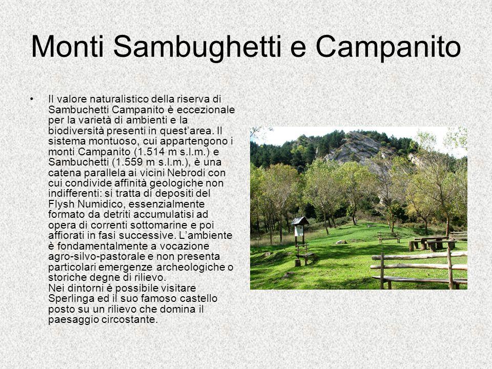 Monti Sambughetti e Campanito