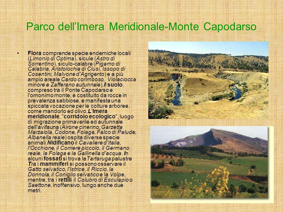 Parco dell'Imera Meridionale-Monte Capodarso