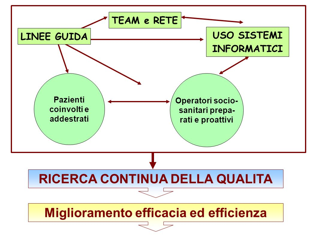 RICERCA CONTINUA DELLA QUALITA Miglioramento efficacia ed efficienza