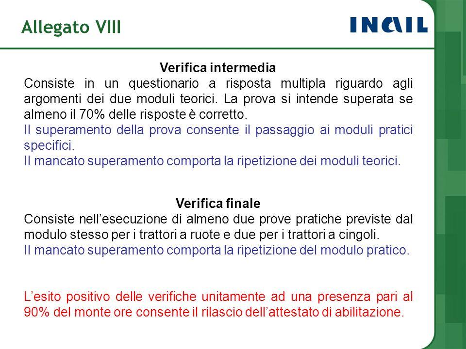 Allegato VIII Verifica intermedia