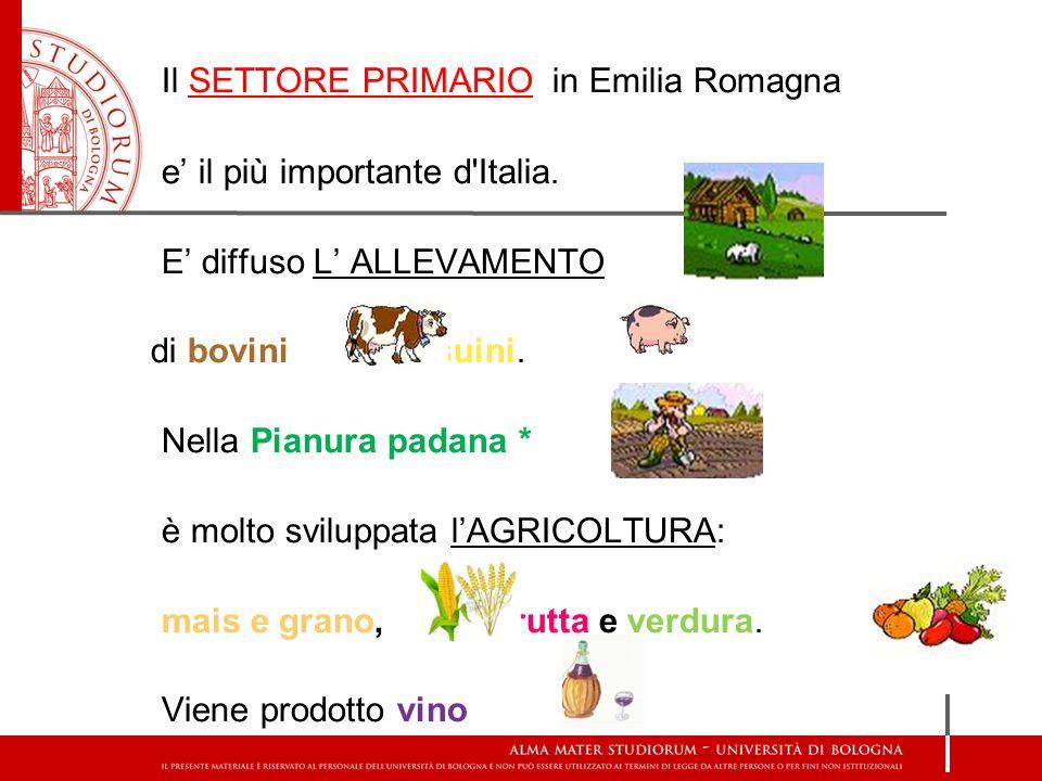Il SETTORE PRIMARIO in Emilia Romagna