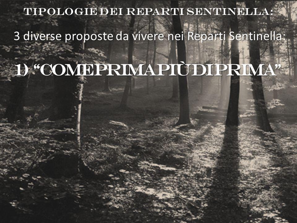 TIPOLOGIE DEI REPARTI SENTINELLA: