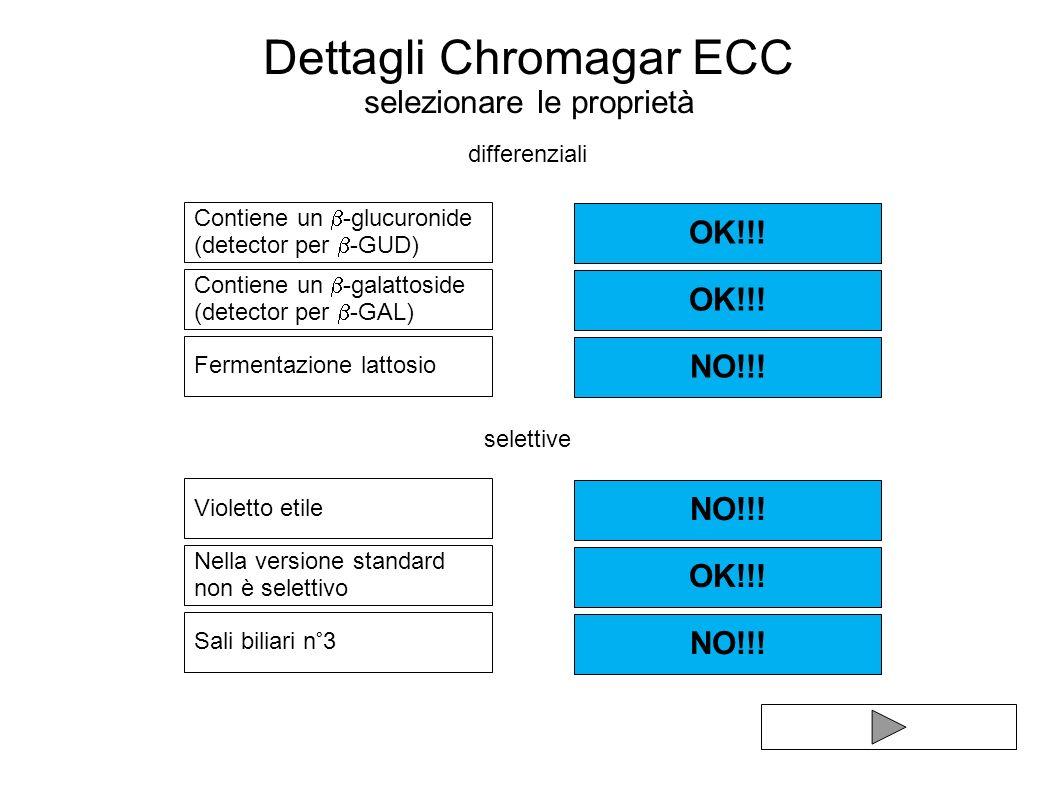 Dettagli Chromagar ECC selezionare le proprietà