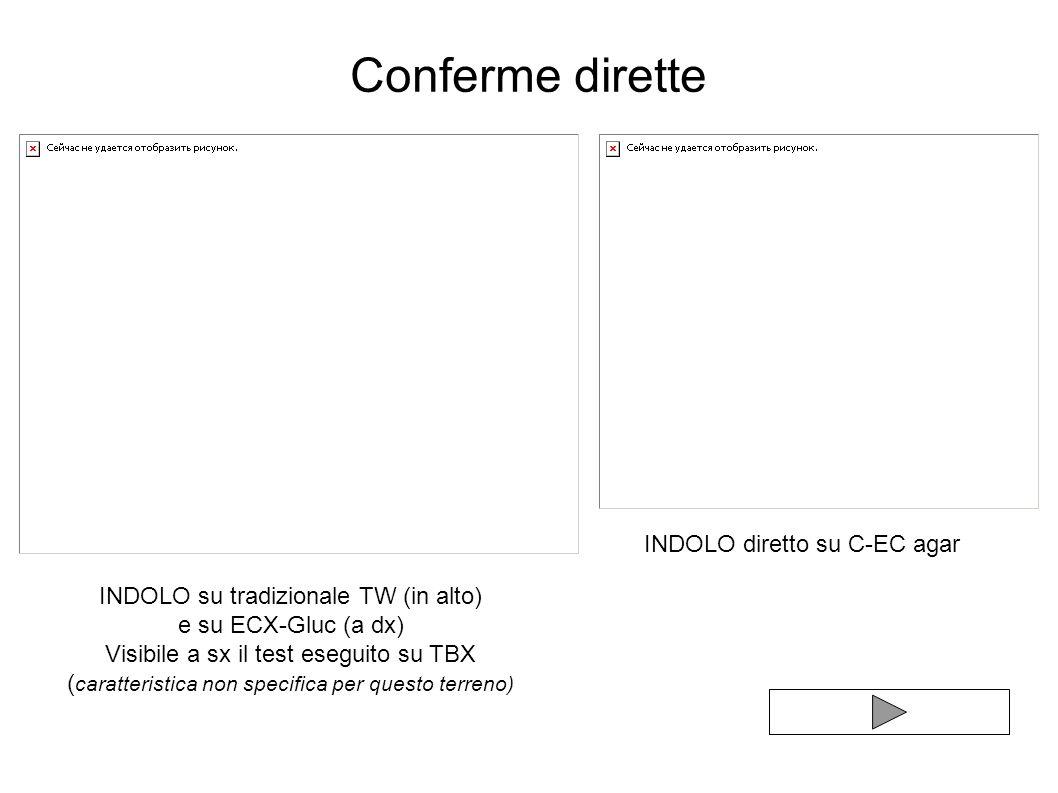 Conferme dirette INDOLO diretto su C-EC agar
