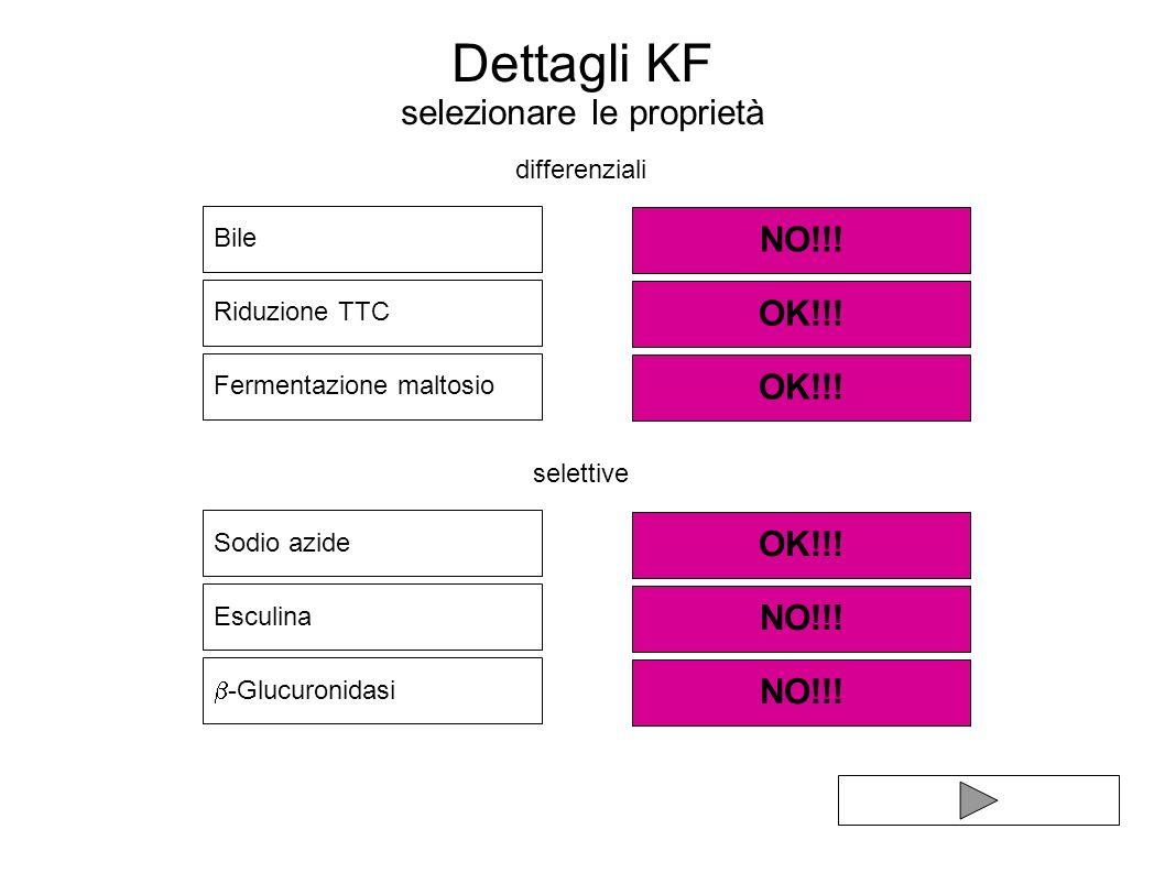 Dettagli KF selezionare le proprietà