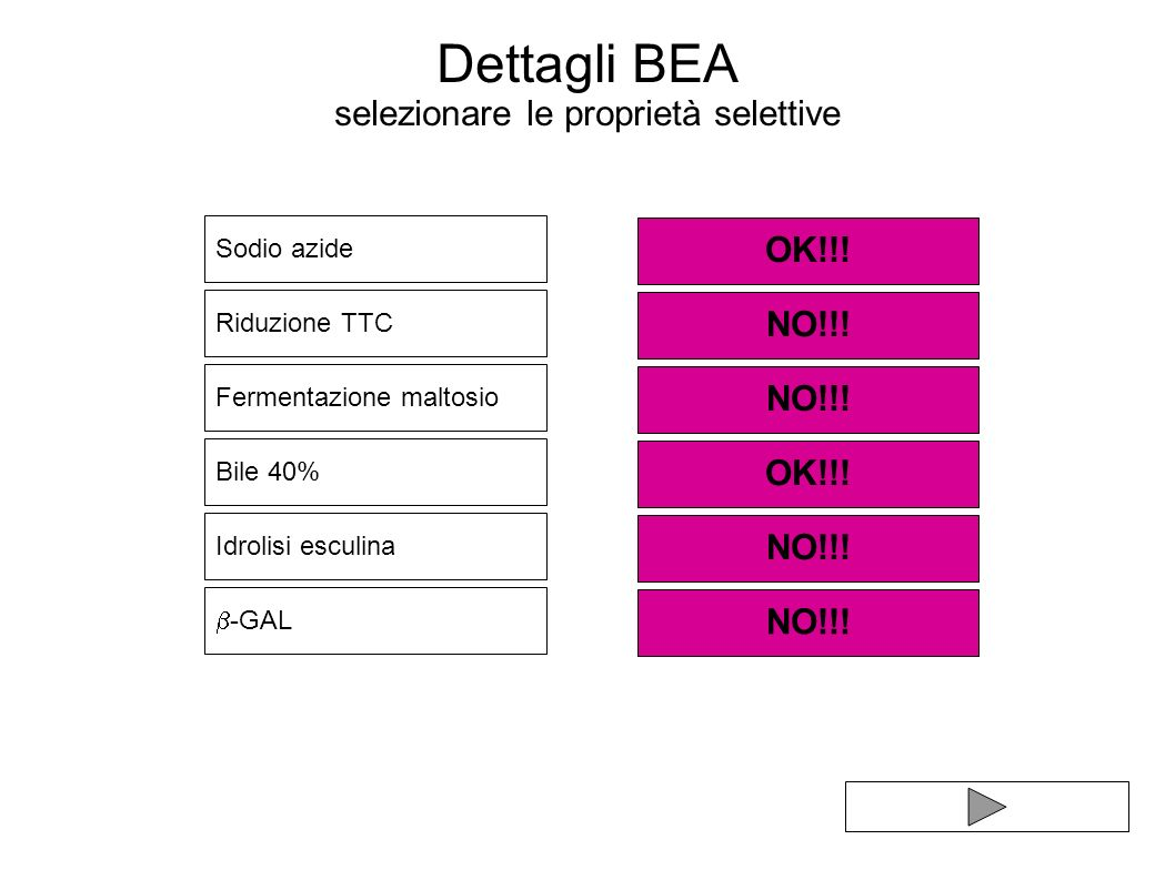 Dettagli BEA selezionare le proprietà selettive