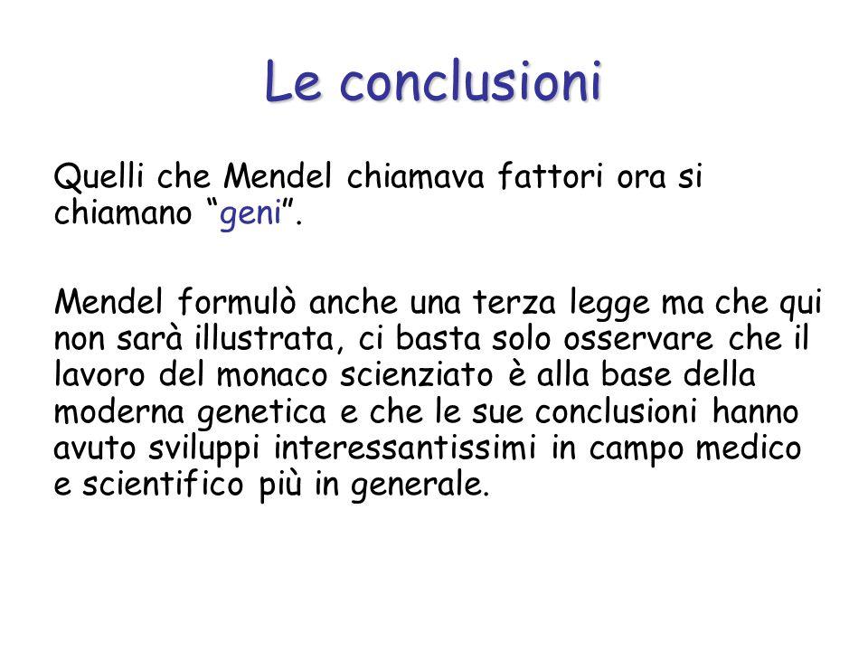 Le conclusioni Quelli che Mendel chiamava fattori ora si chiamano geni .