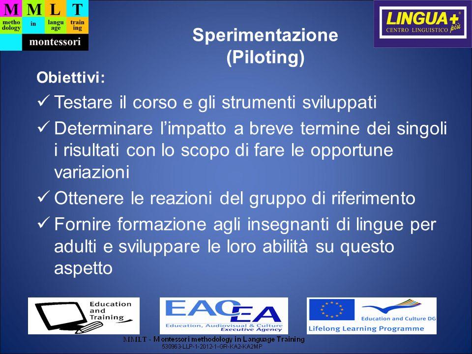 Sperimentazione (Piloting)