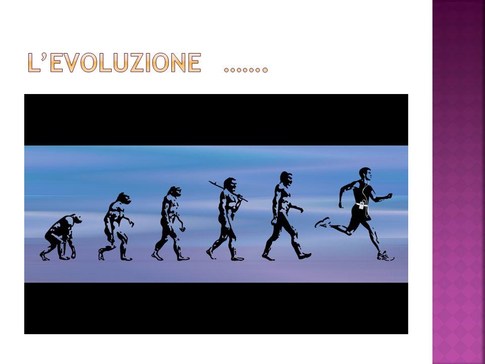 L'EVOLUZIONE …….