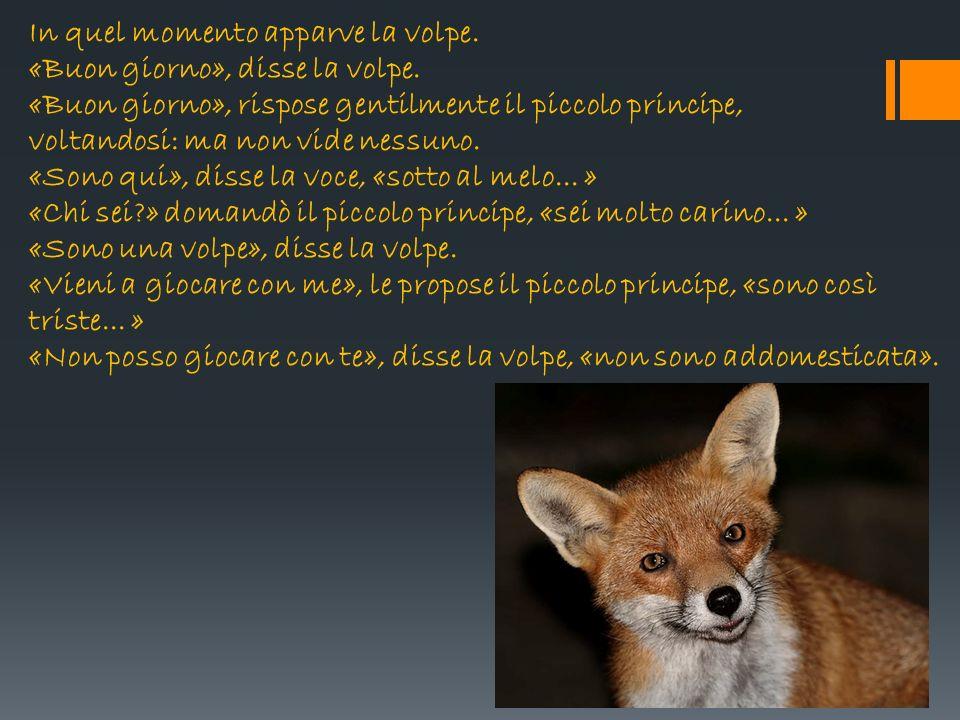 Amato Il piccolo principe e la volpe - ppt video online scaricare AQ32