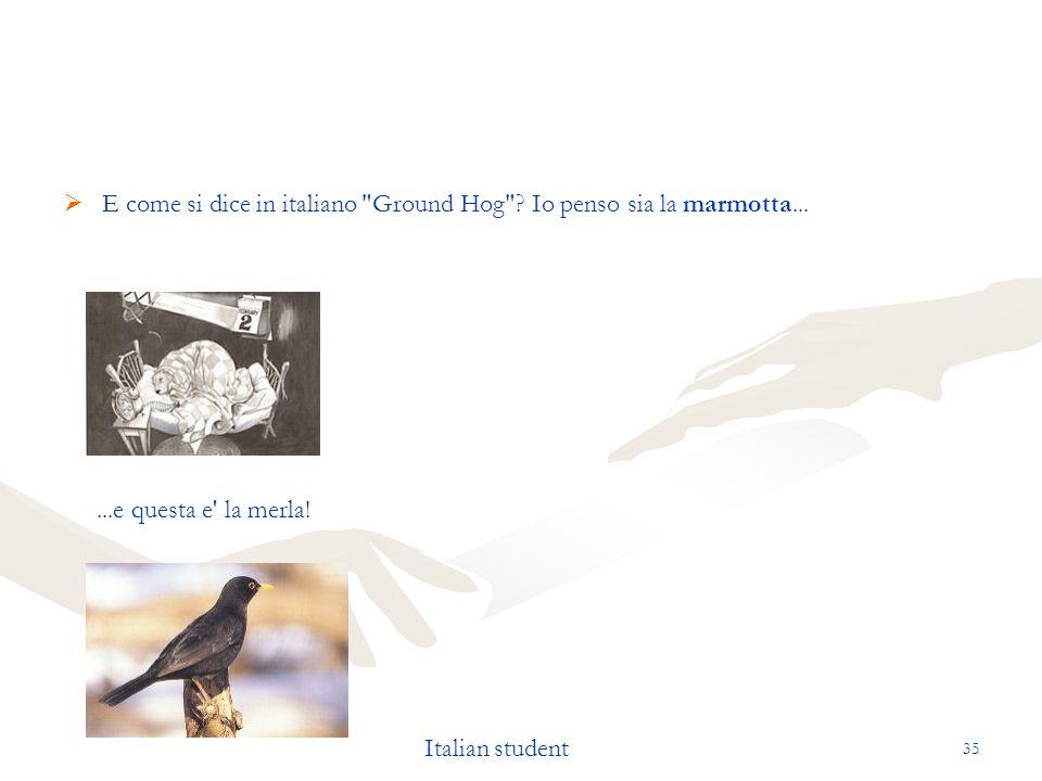 E come si dice in italiano Ground Hog Io penso sia la marmotta...