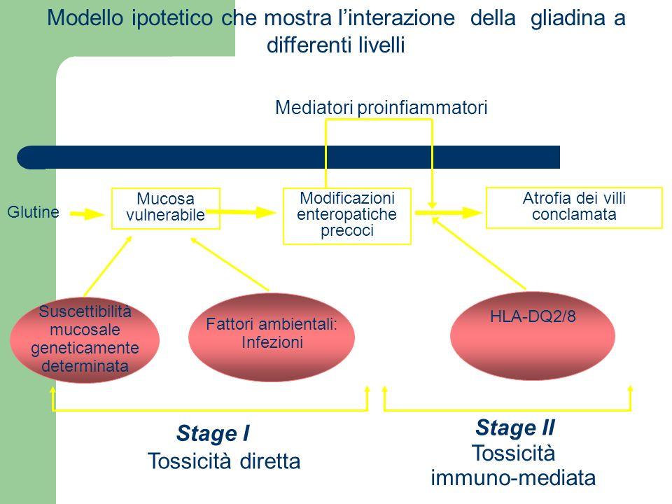 Tossicità immuno-mediata Tossicità diretta