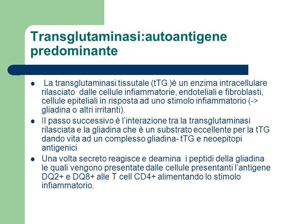 Transglutaminasi:autoantigene predominante