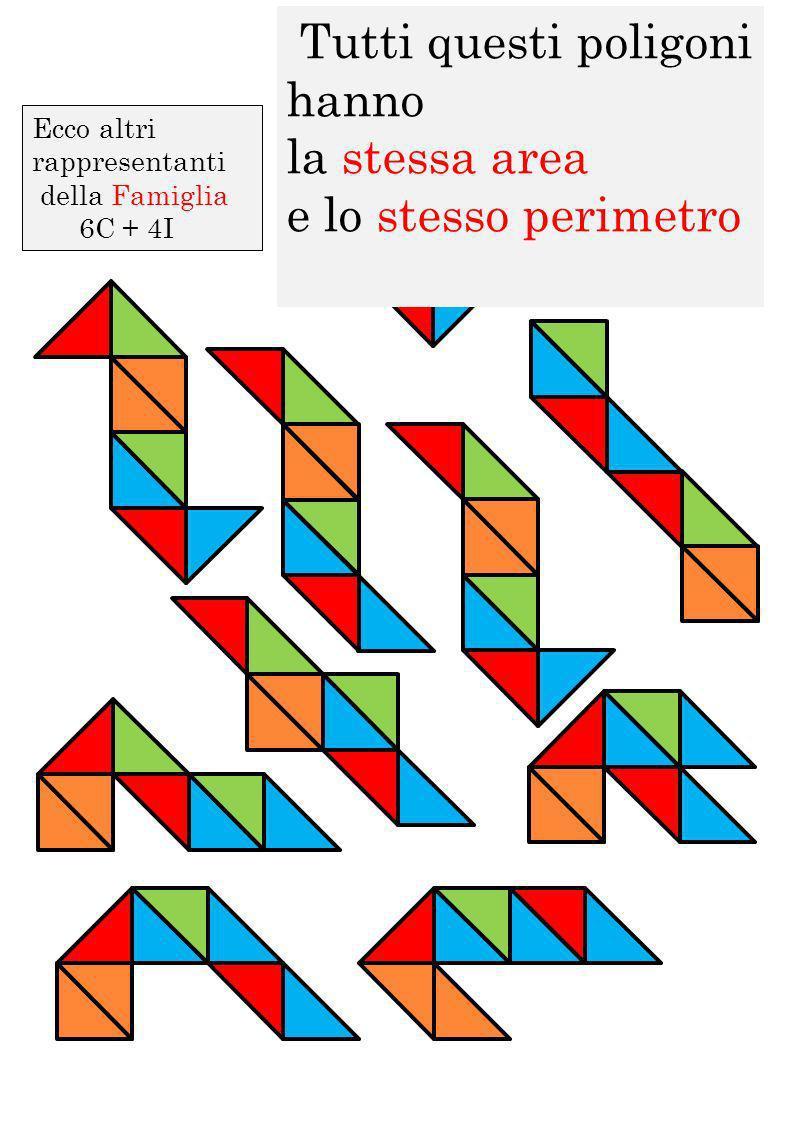 Tutti questi poligoni hanno la stessa area e lo stesso perimetro