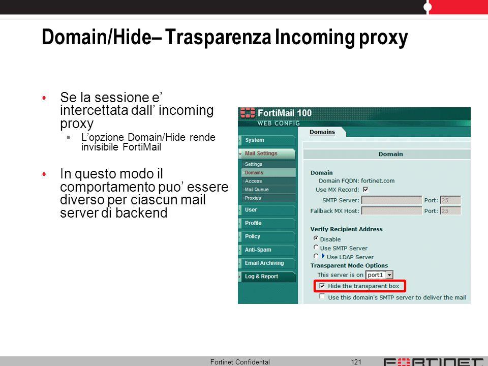 Domain/Hide– Trasparenza Incoming proxy