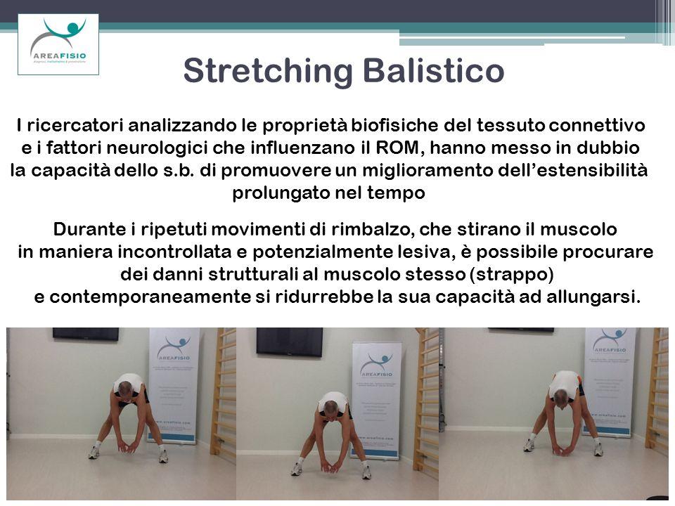 Stretching Balistico I ricercatori analizzando le proprietà biofisiche del tessuto connettivo.