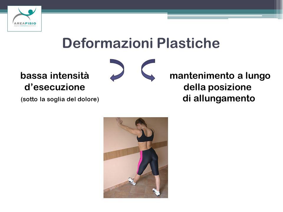 Deformazioni Plastiche