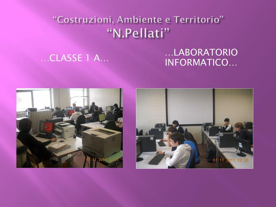 Costruzioni, Ambiente e Territorio N.Pellati