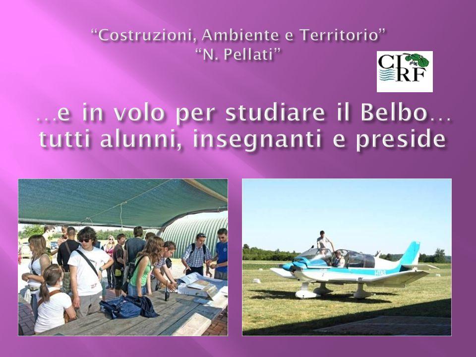 Costruzioni, Ambiente e Territorio N. Pellati