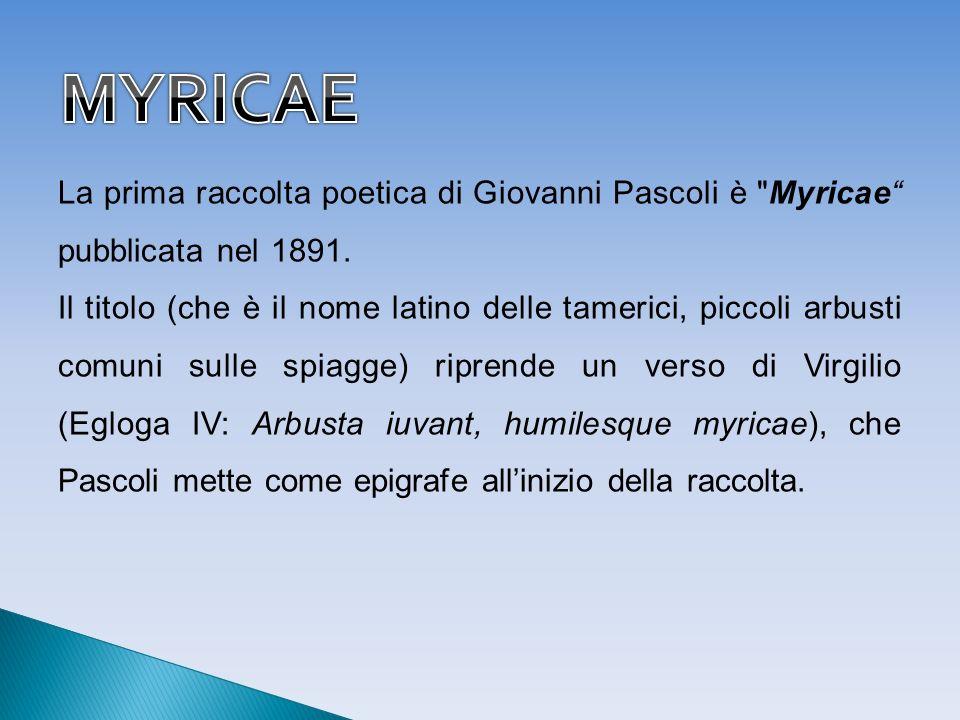 MYRICAELa prima raccolta poetica di Giovanni Pascoli è Myricae pubblicata nel 1891.