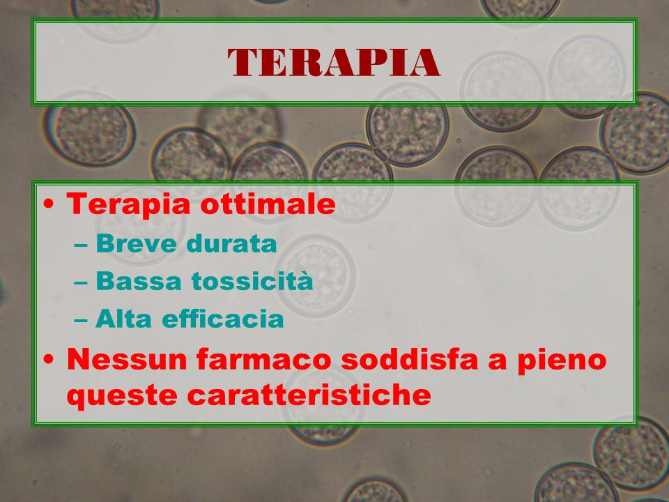 TERAPIA Terapia ottimale