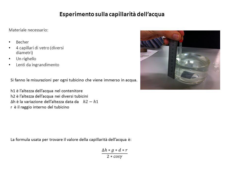 Esperimento sulla capillarità dell'acqua