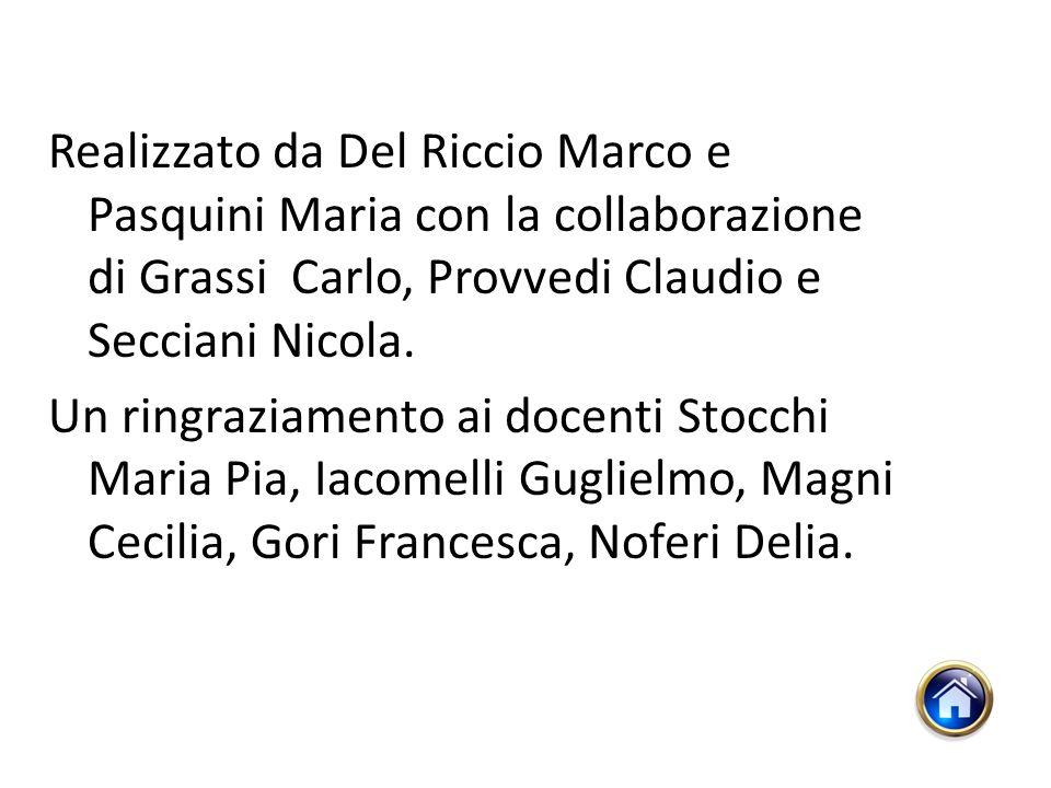 Realizzato da Del Riccio Marco e Pasquini Maria con la collaborazione di Grassi Carlo, Provvedi Claudio e Secciani Nicola.