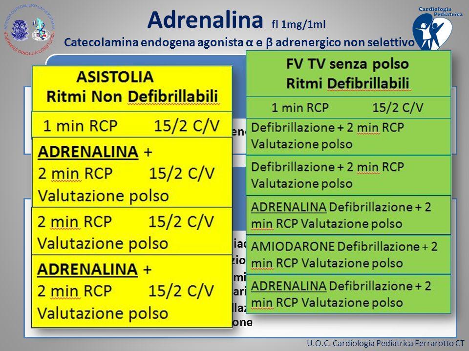Catecolamina endogena agonista α e β adrenergico non selettivo