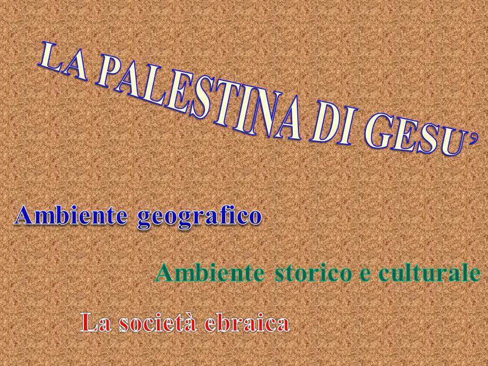 Ambiente storico e culturale