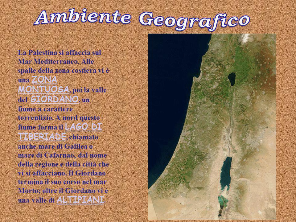 Ambiente Geografico