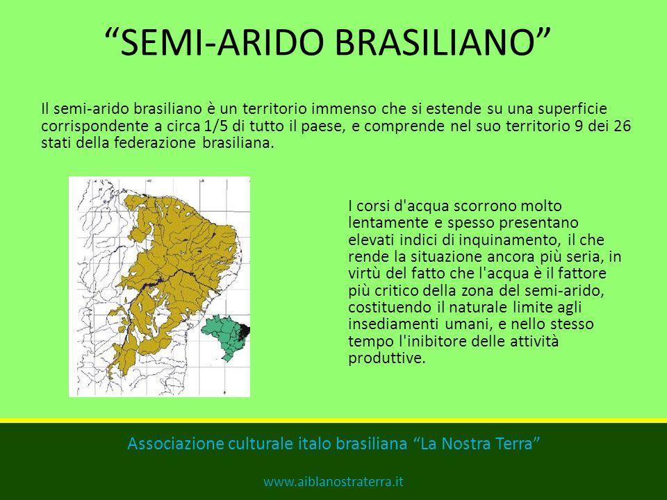 SEMI-ARIDO BRASILIANO