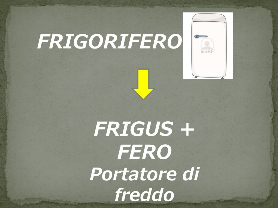 FRIGORIFERO FRIGUS + FERO
