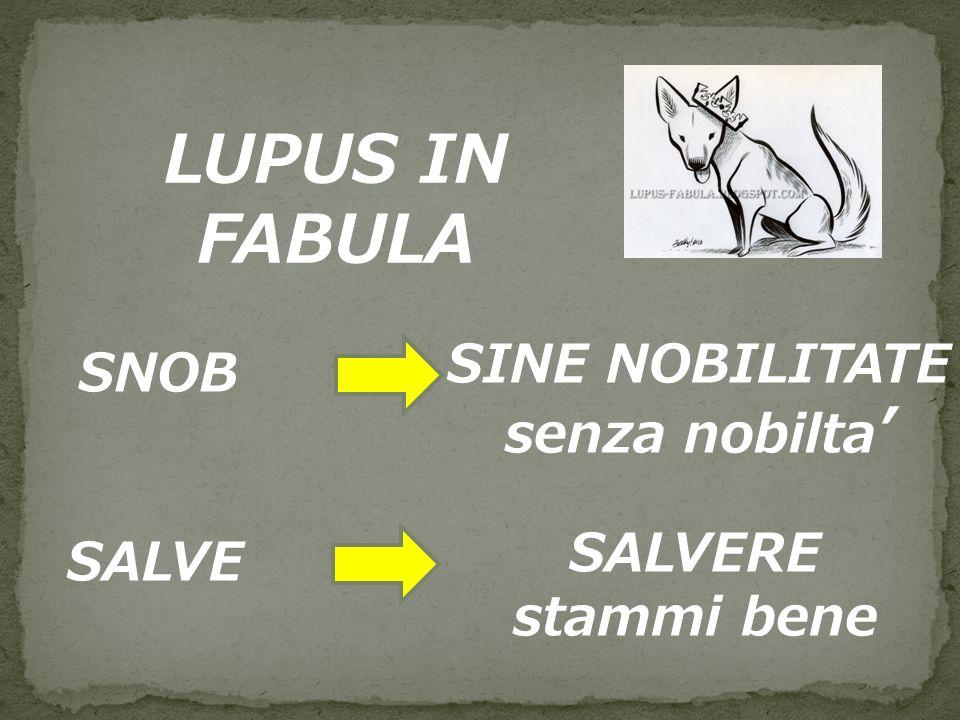 LUPUS IN FABULA SNOB SINE NOBILITATE senza nobilta' SALVE SALVERE
