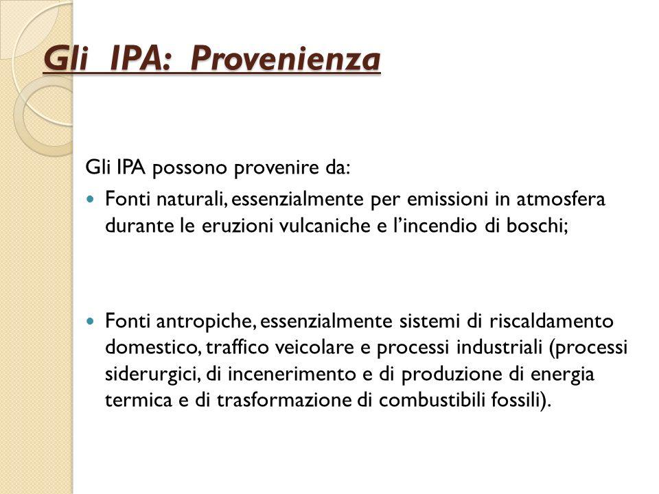 Gli IPA: Provenienza Gli IPA possono provenire da: