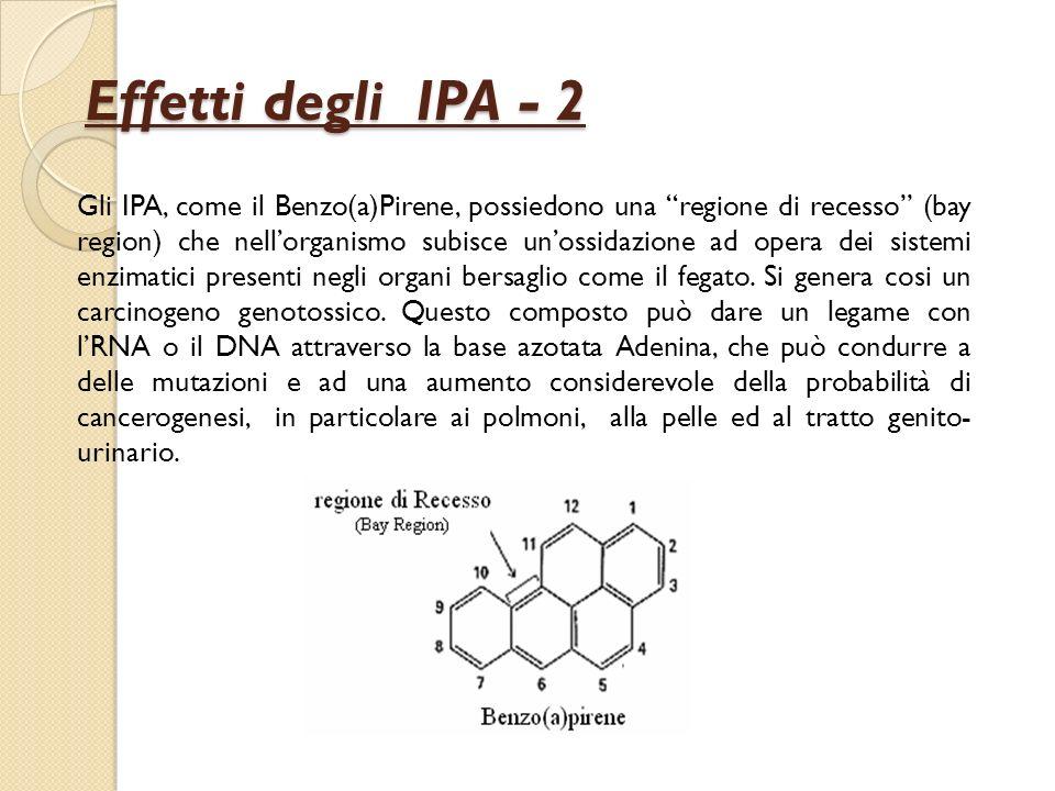 Effetti degli IPA - 2