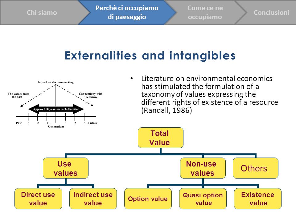 Externalities and intangibles