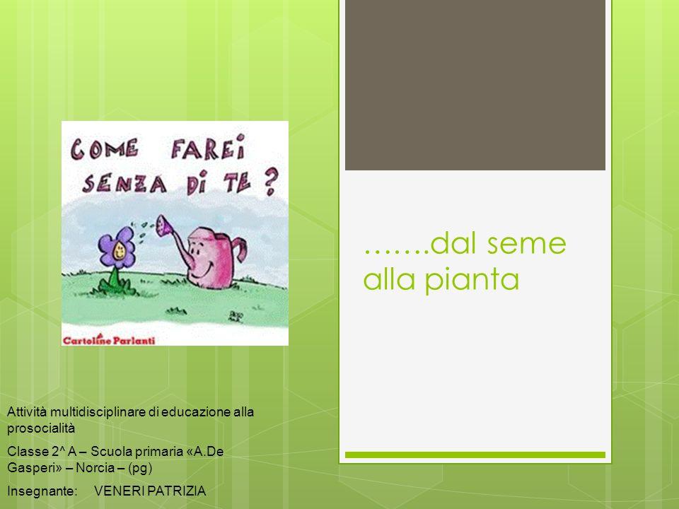 …….dal seme alla piantaAttività multidisciplinare di educazione alla prosocialità. Classe 2^ A – Scuola primaria «A.De Gasperi» – Norcia – (pg)