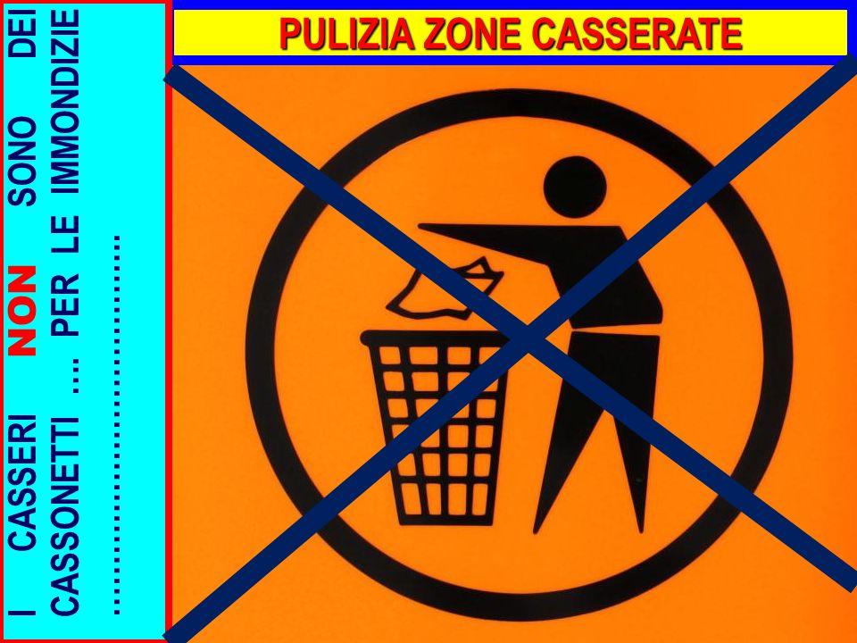 PULIZIA ZONE CASSERATE