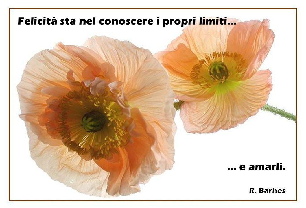 Felicità sta nel conoscere i propri limiti…