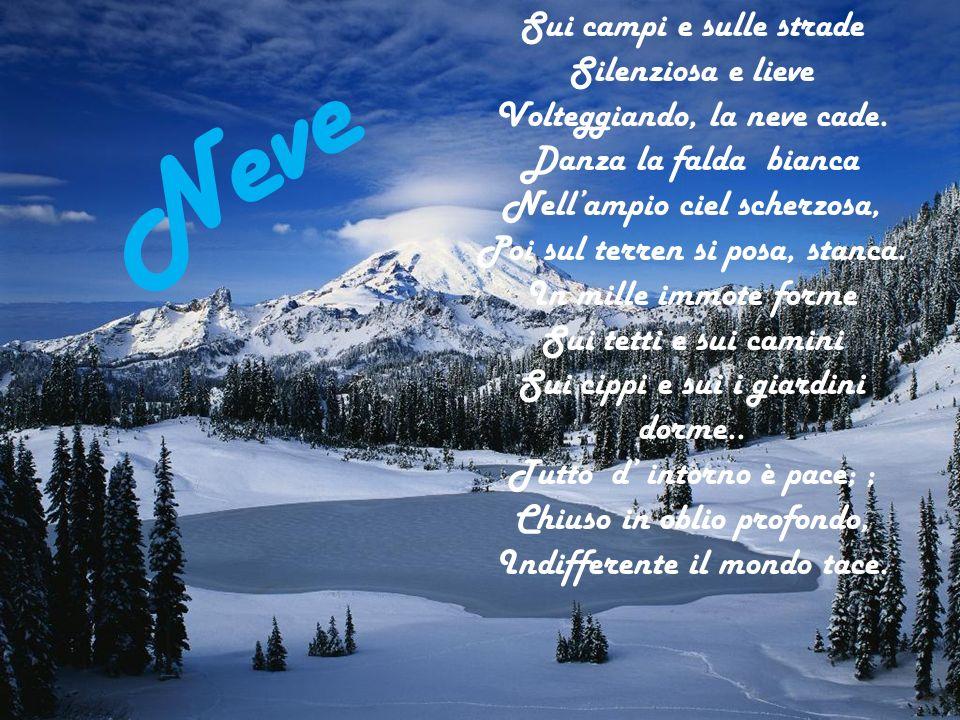 Neve Sui campi e sulle strade Silenziosa e lieve